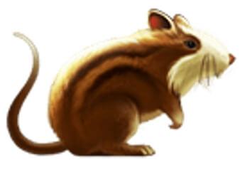 Крысы в игре Великий султан