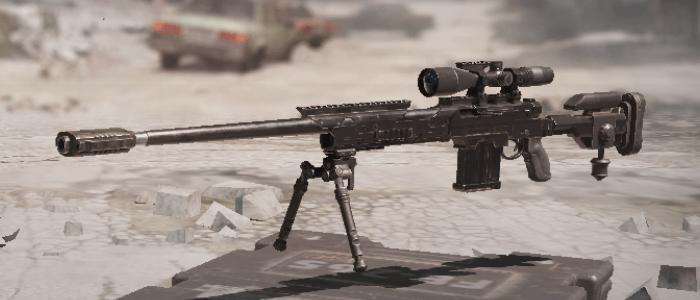 Вид снайперки DL q33 в игре
